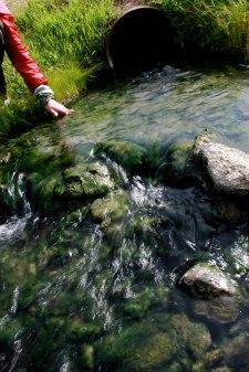 Some river in Alaska. (2011)